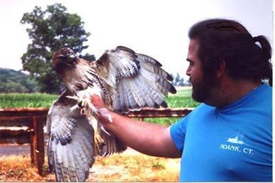 Tressé Eagle Jesses
